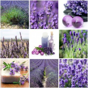 aromatic medicine