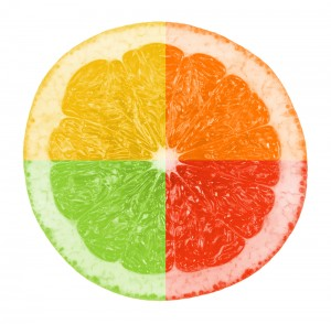 shutterstock_51206041 CITRUS 4WAY